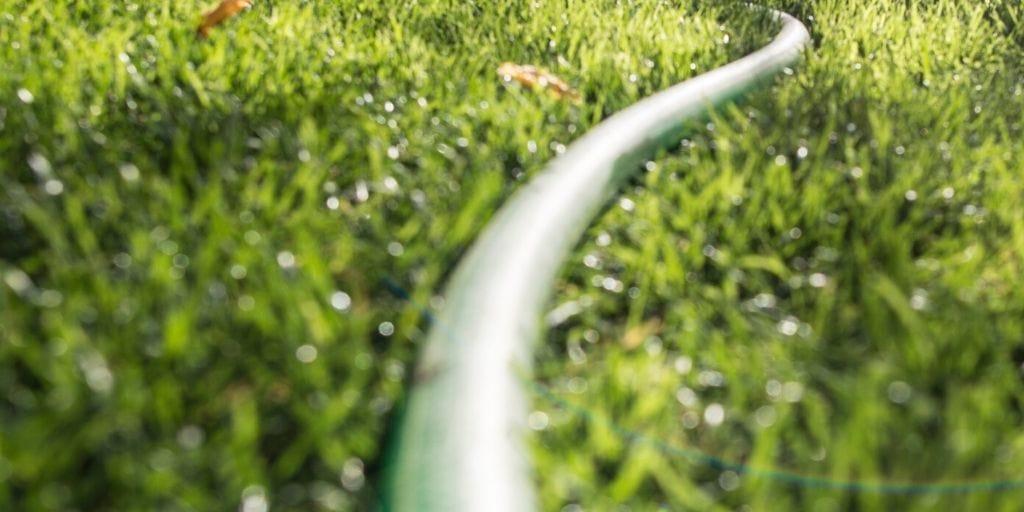 garden hose running along the grass