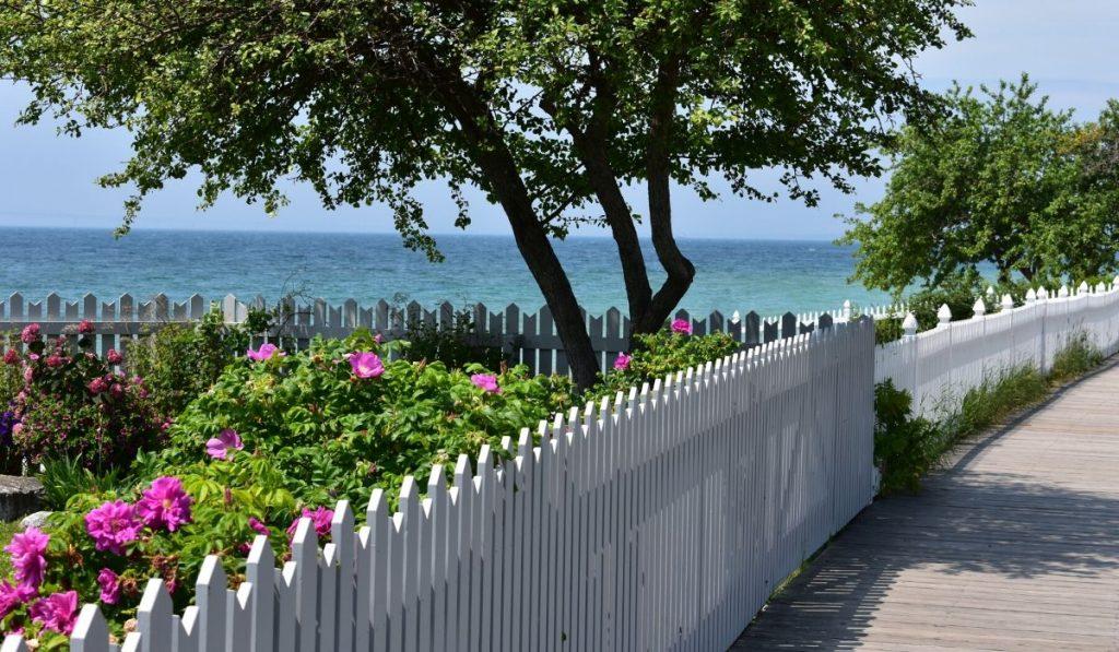 beautiful garden fence by the ocean