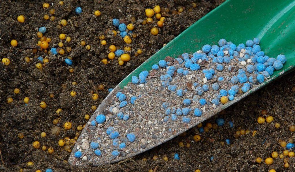 fertilizer being added to garden soil