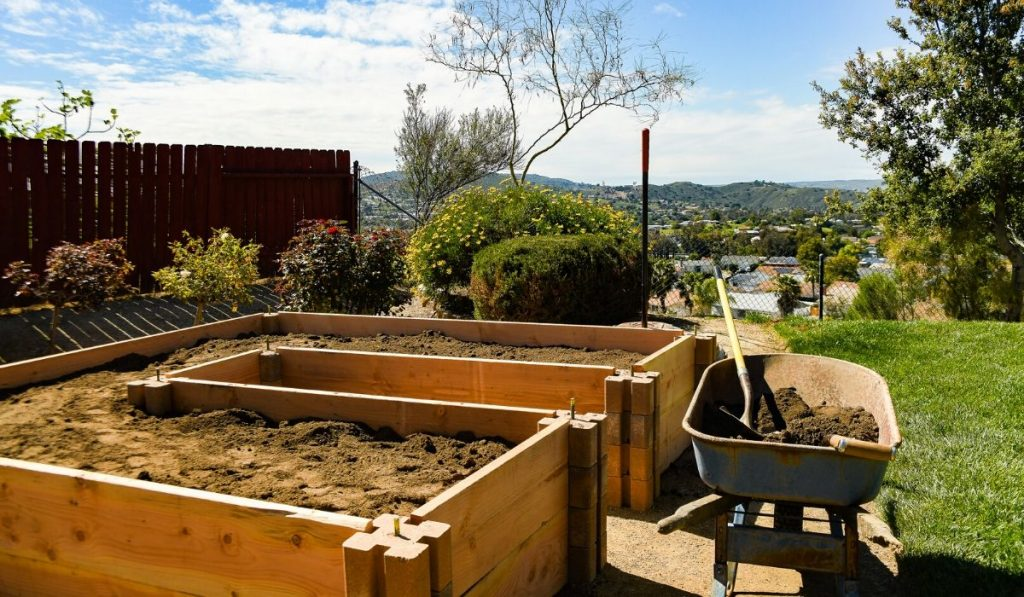 filling raised garden beds with soil