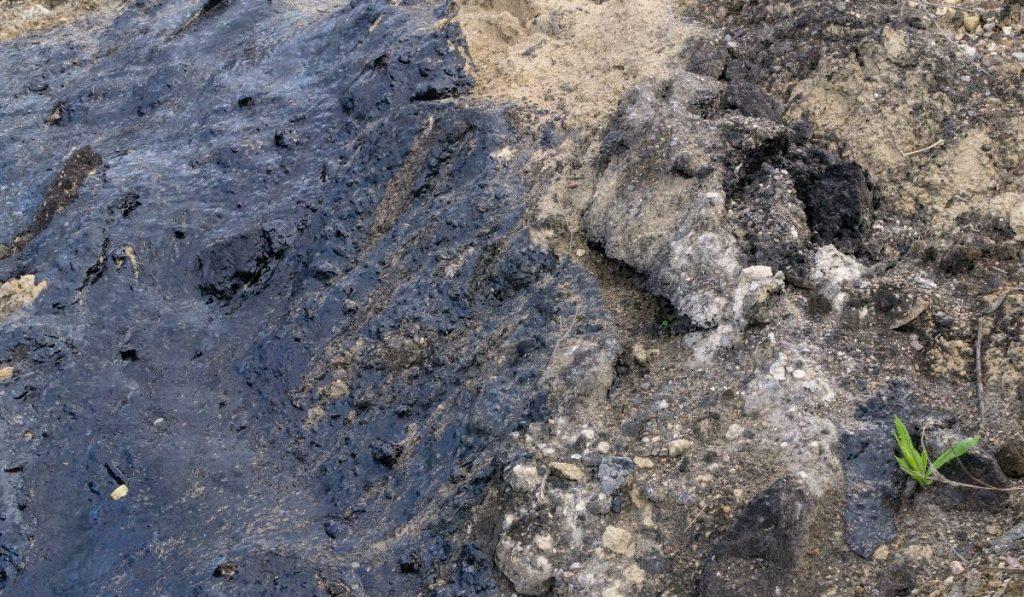 oil contaminated soil