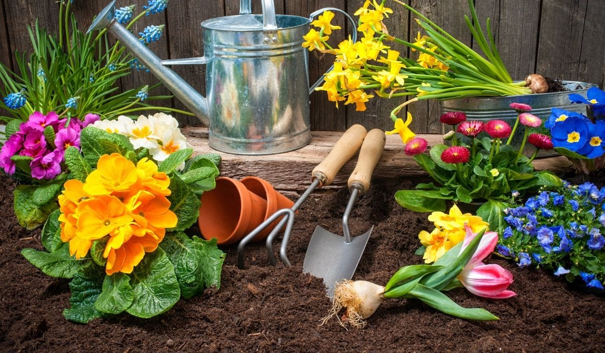 potting soil as topsoil