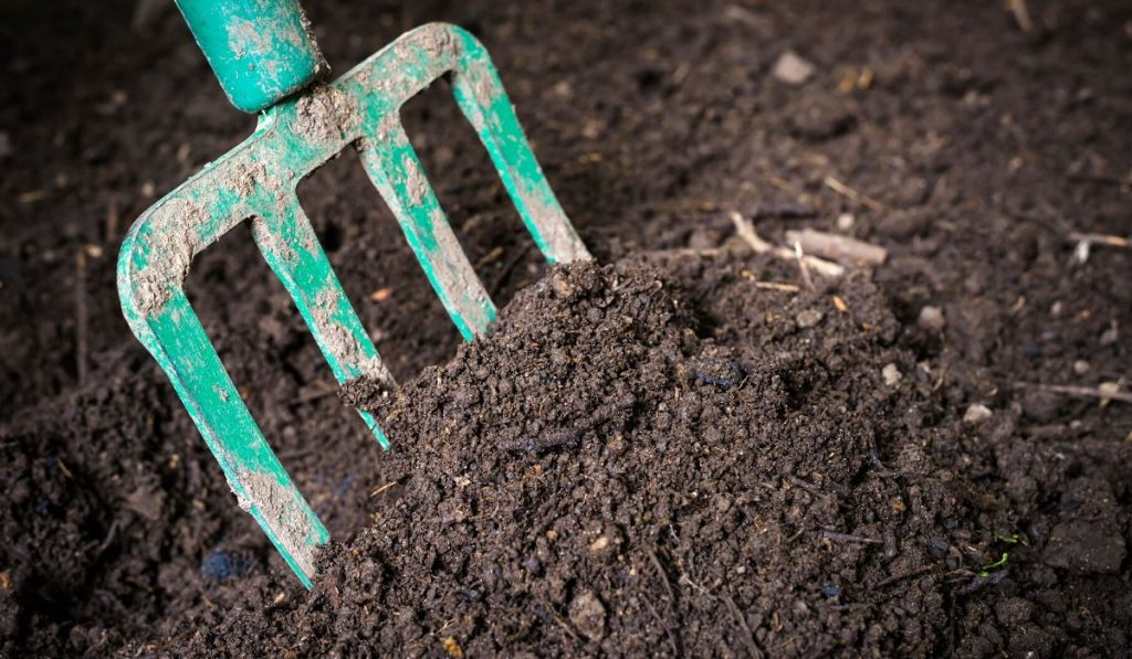 smelly topsoil with gardening tool