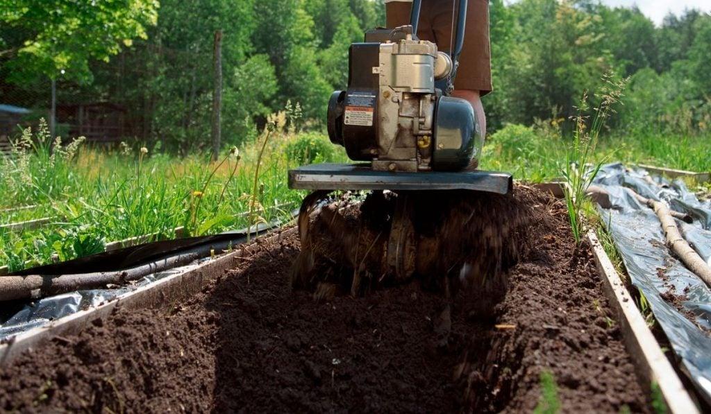Man tilling garden