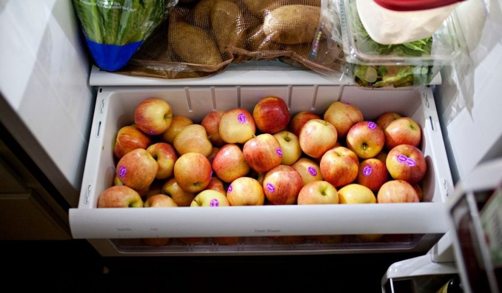 Apples in freezer