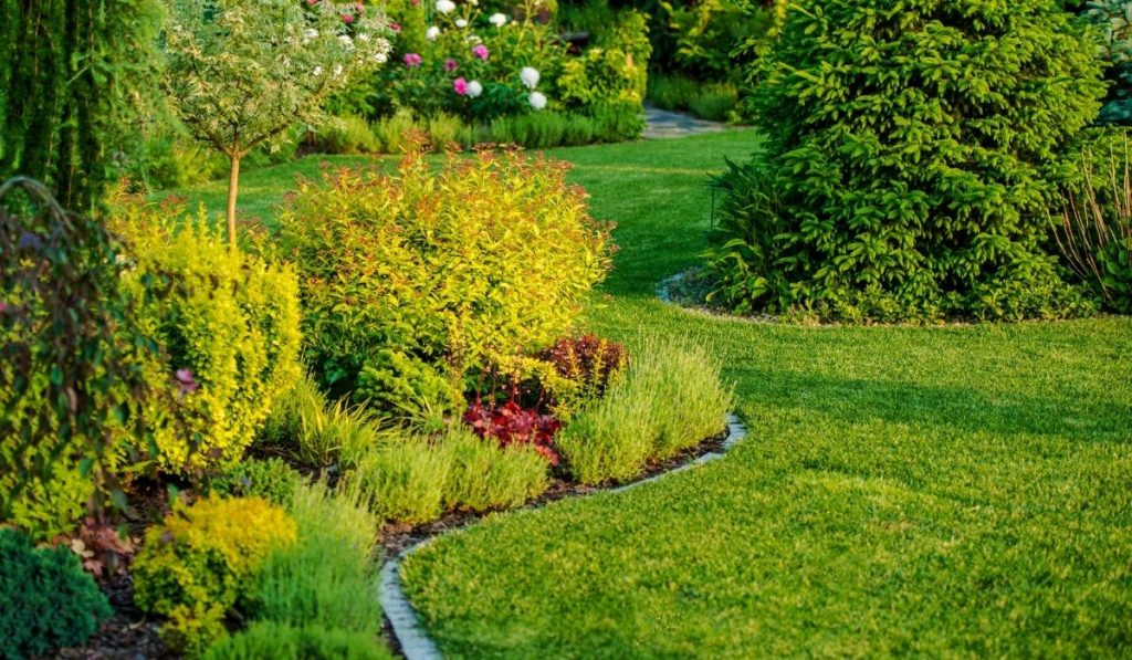 In-ground garden design