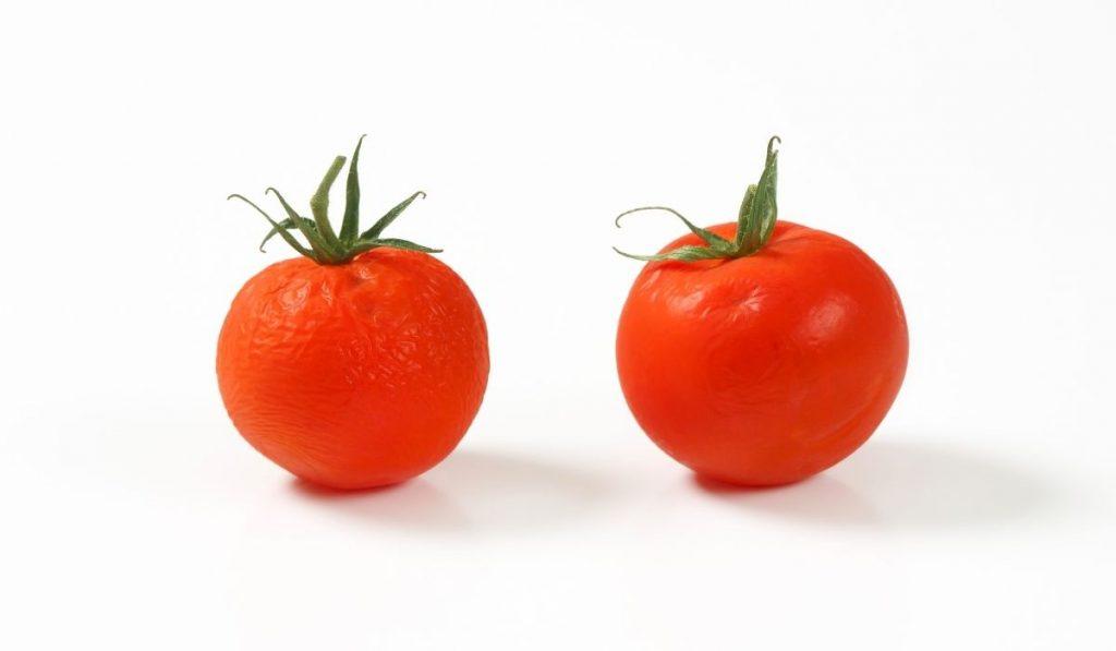 Bad tomato and good tomato