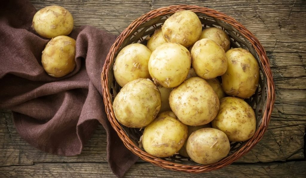 Fresh potato in the basket
