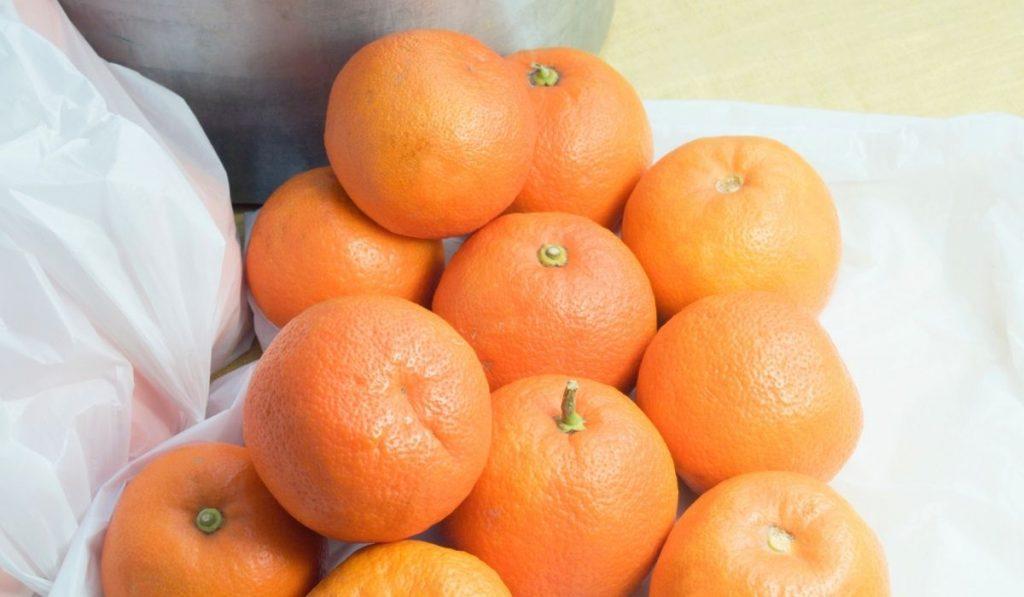 Seville Sour Orange