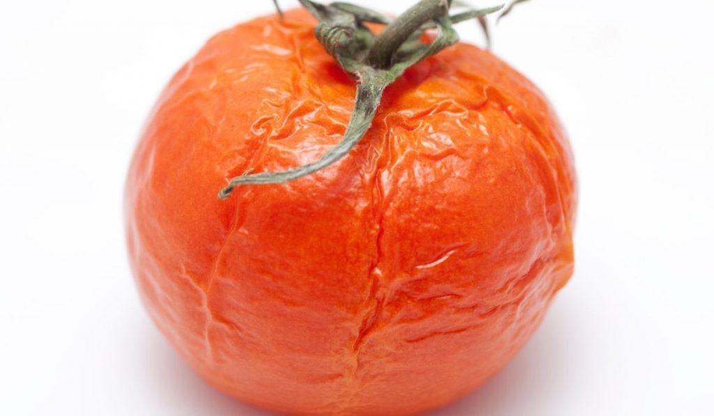 Wrinkled tomato