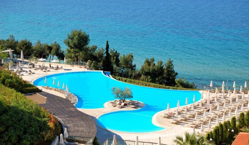 Fruitless Olive Tree Near Swimming Pool