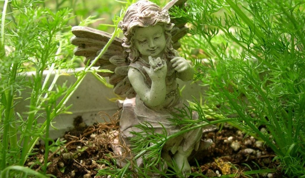 Garden Fairy In Herb Garden