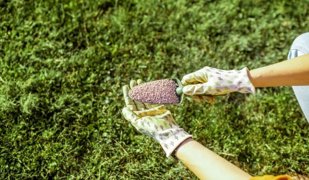 Grass-Specific Fertilizer