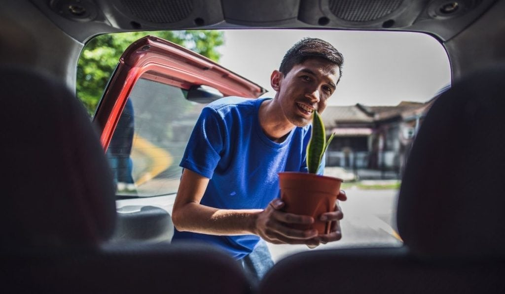 Man placing plants inside the car