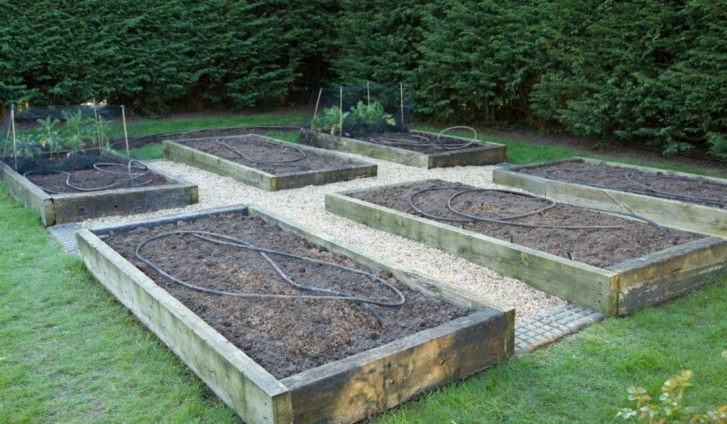 Seeding on Garden During Winter