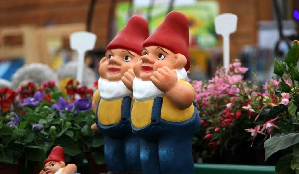 Twin Garden Gnome