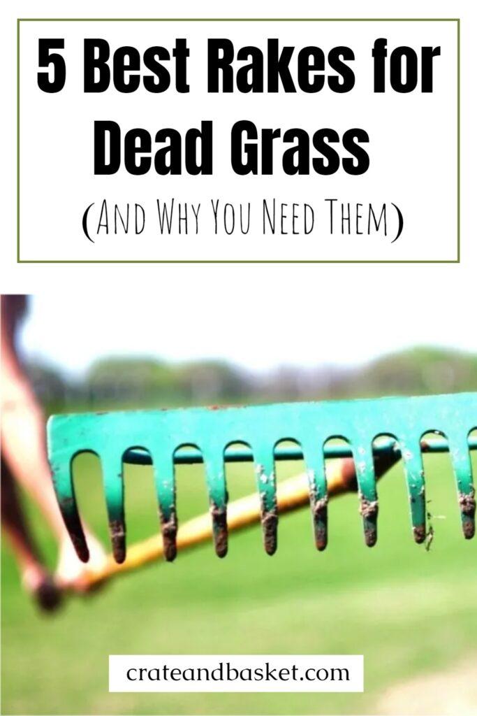 pinterest image - best rakes for dead grass