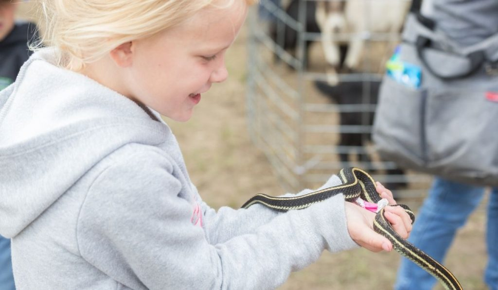 a little girl holding a garter snake