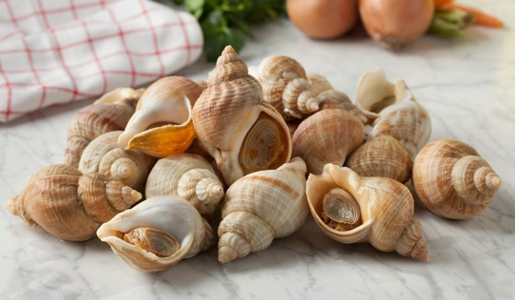 common whelks with a tablecloth and vegetables in the background
