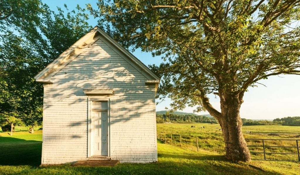 tiny home shed in the field