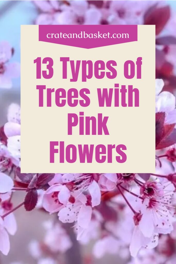 pinterest image - tees with pink flowers