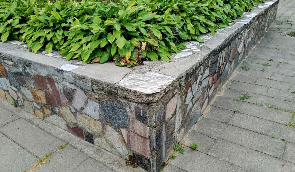Concrete Raise garden