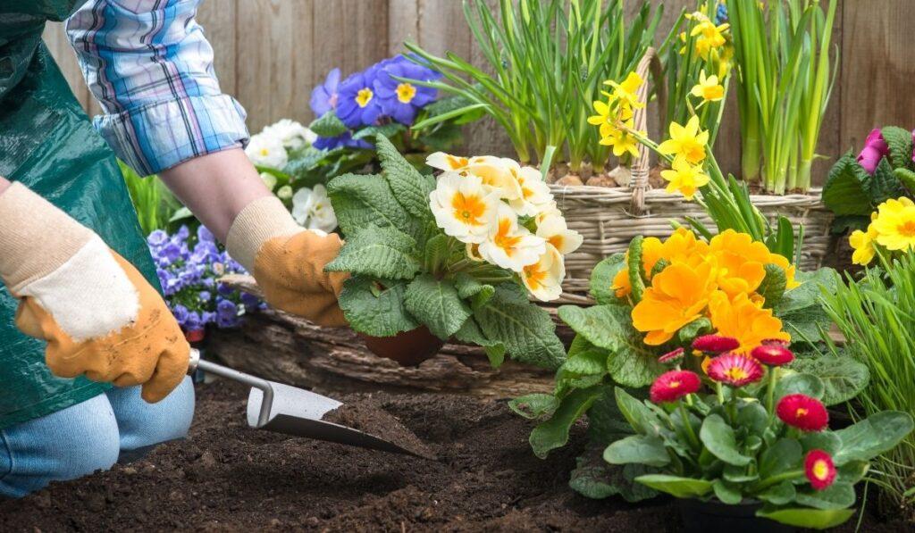 Gardener-Planting-Flowers
