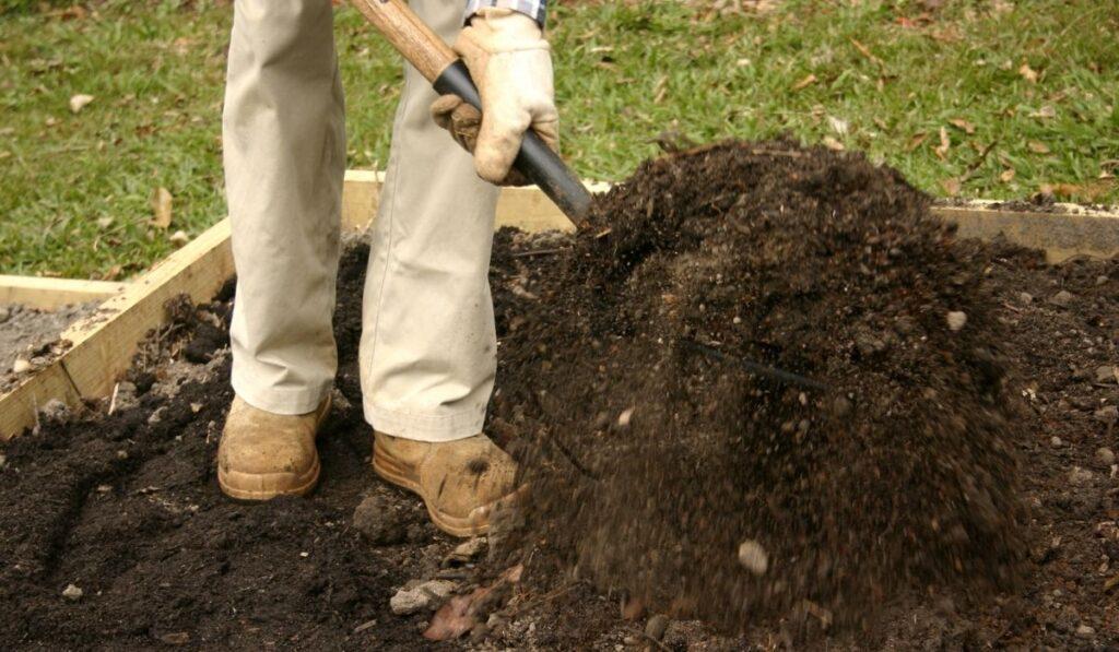 Man Digging Garden Soil