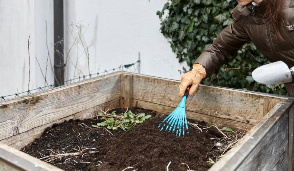 Woman Preparing raise Bed Garden