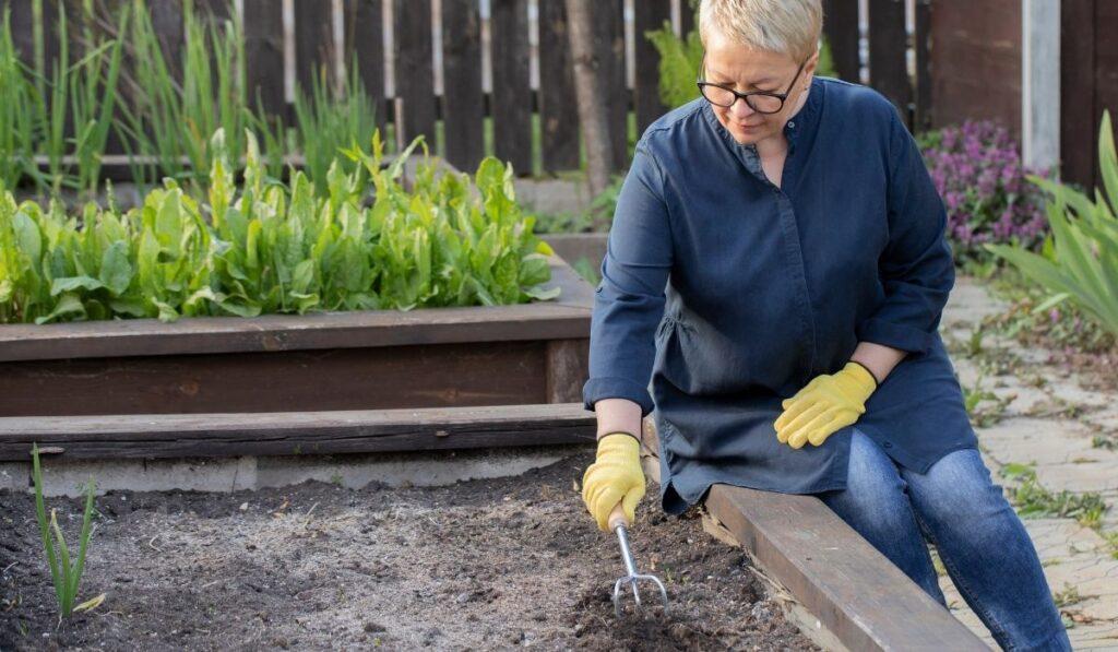 Woman-Preparing-Raised-Garden-Soil