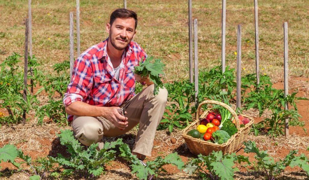 organic-farmers-at-work