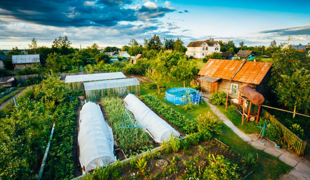 Raised-Bed-Backyard