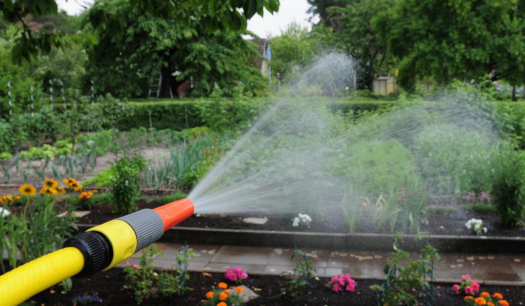 hose-garden