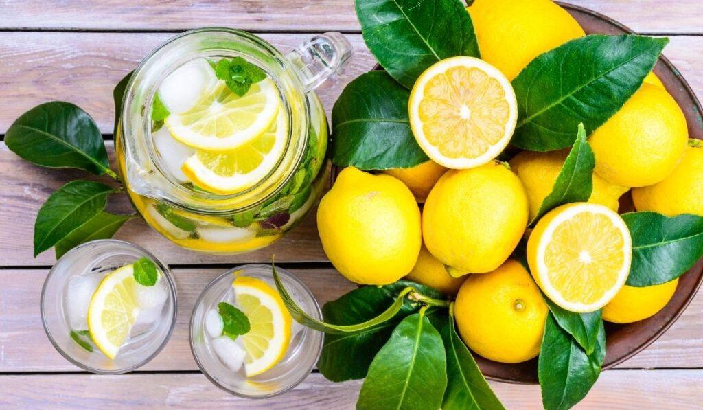fresh lemons and a pitcher of lemon juice